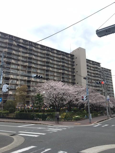 京橋グリ-ンハイツ1号棟