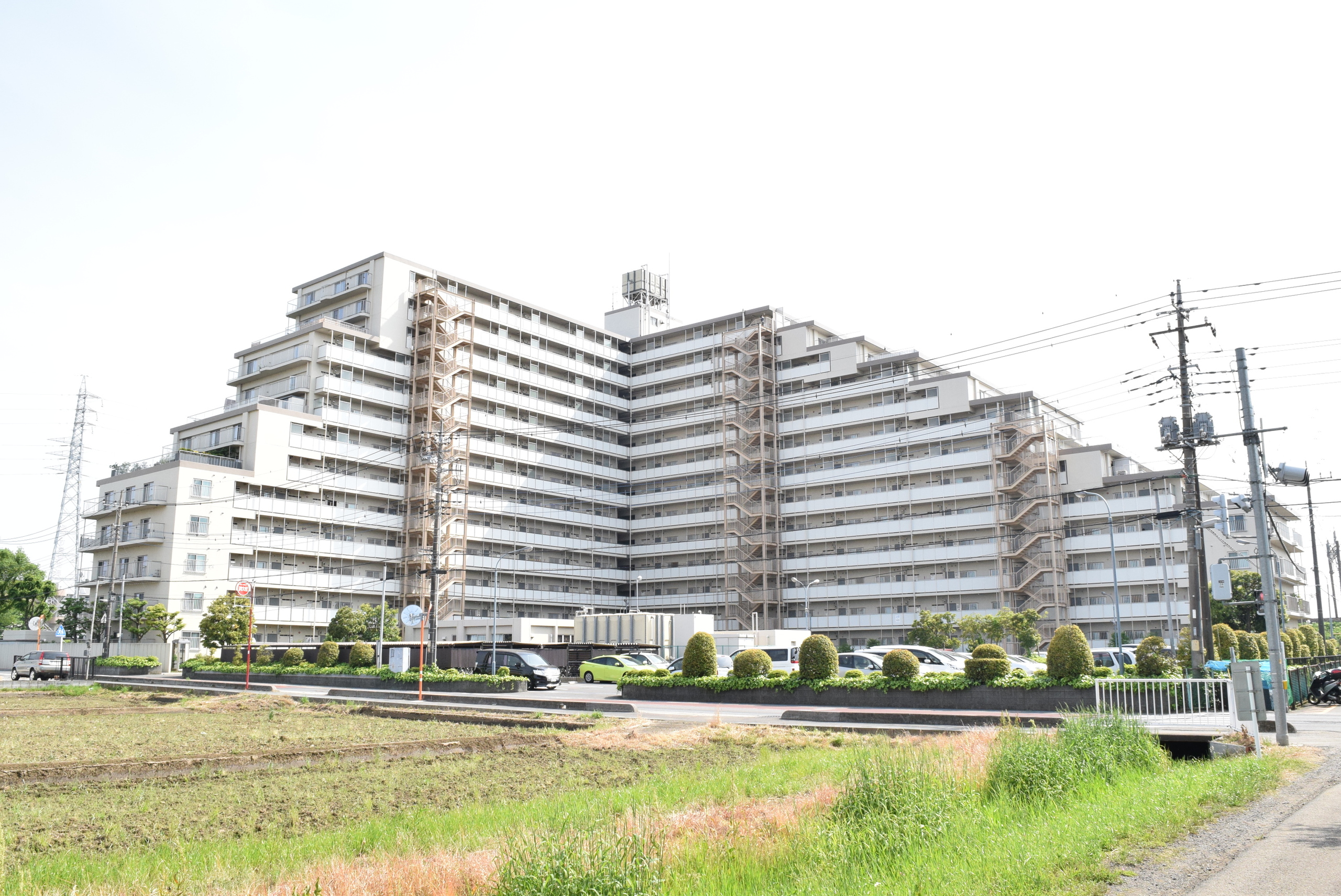 富士見ニュ-ライフ